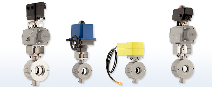 Ball sector valves